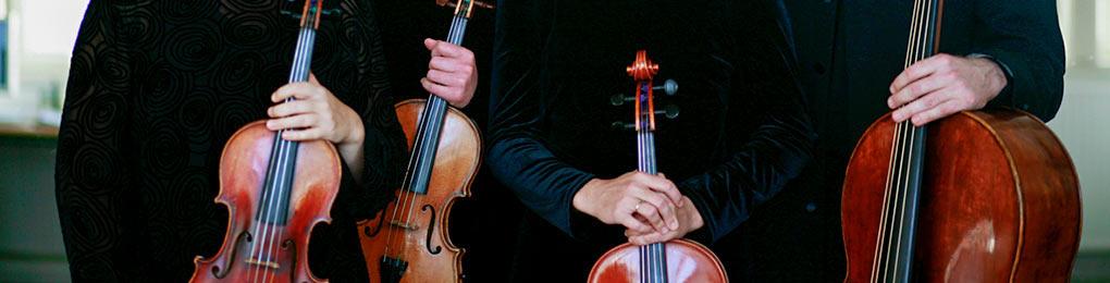 Trio Ardore (Violin, Horn & Fagott)